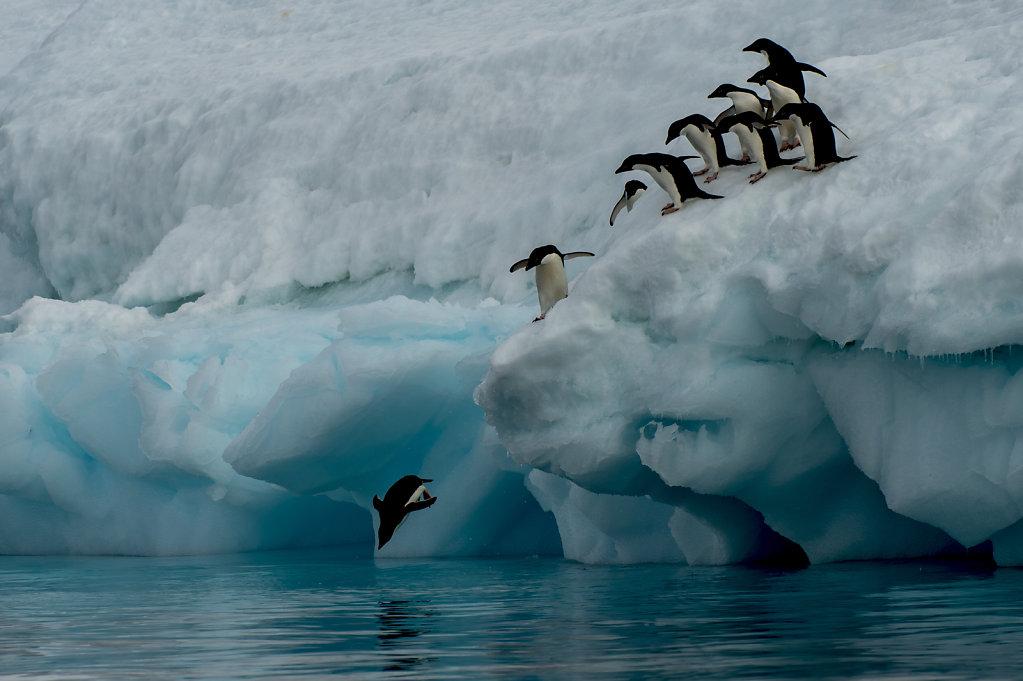 Antarctica11.jpg