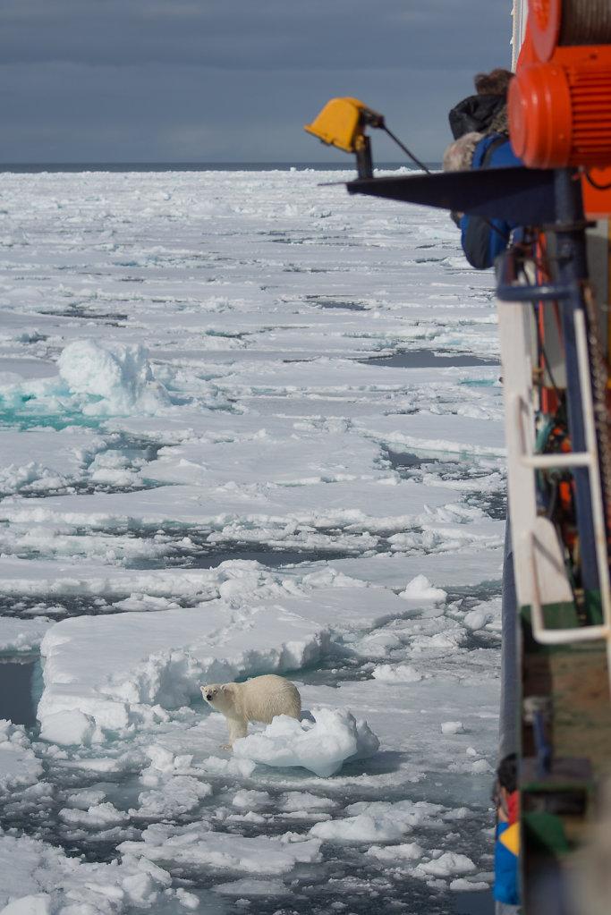 Spitsbergen14-18.jpg