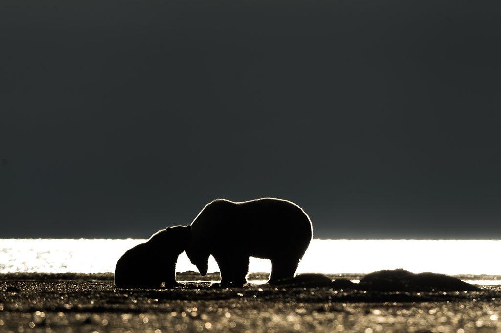Alaska16-052.jpg